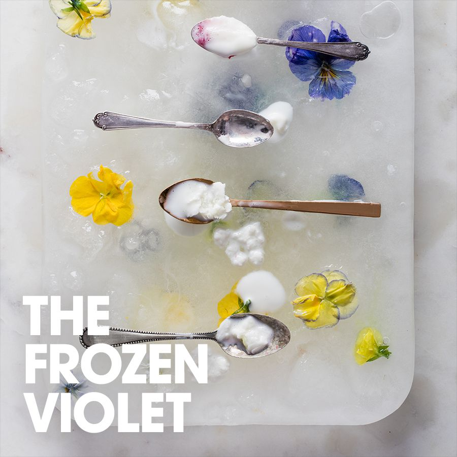 The frozen violet